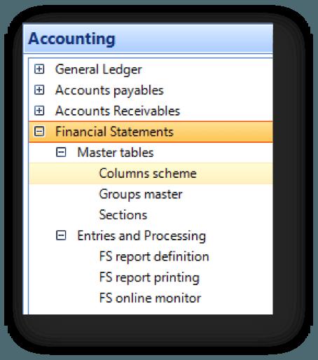Financial_Statements_in_erpWizard1