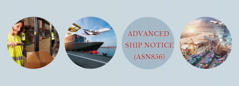 What is Advanced Ship Notice (ASN) 856 transaction set?