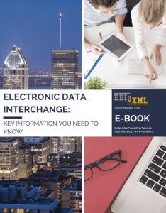 Electronic data Interchange eBook