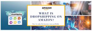 Amazon drop ship